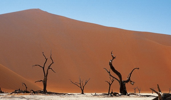 Scenic Sossusvlei by Mike Meyers
