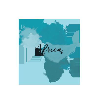 Africa Destination