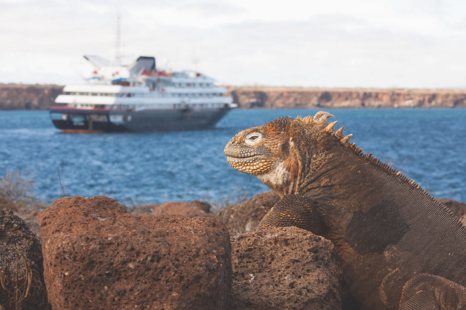 Silversea Expeditions Galapagos