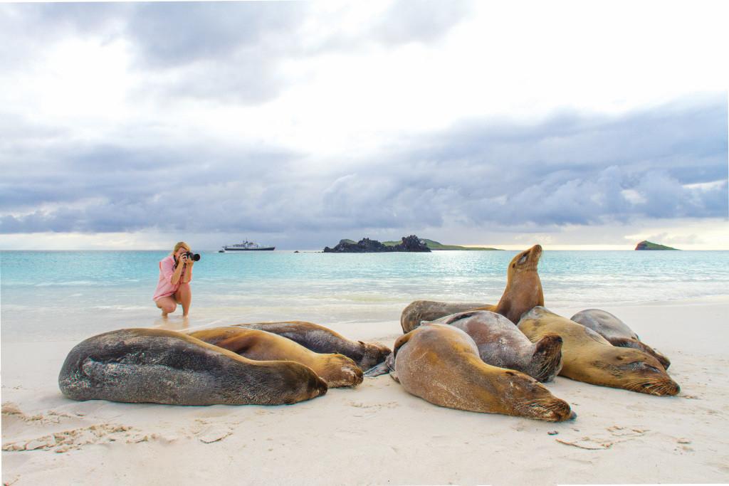Sea Lion Photograph_Galapagos_Lindblad