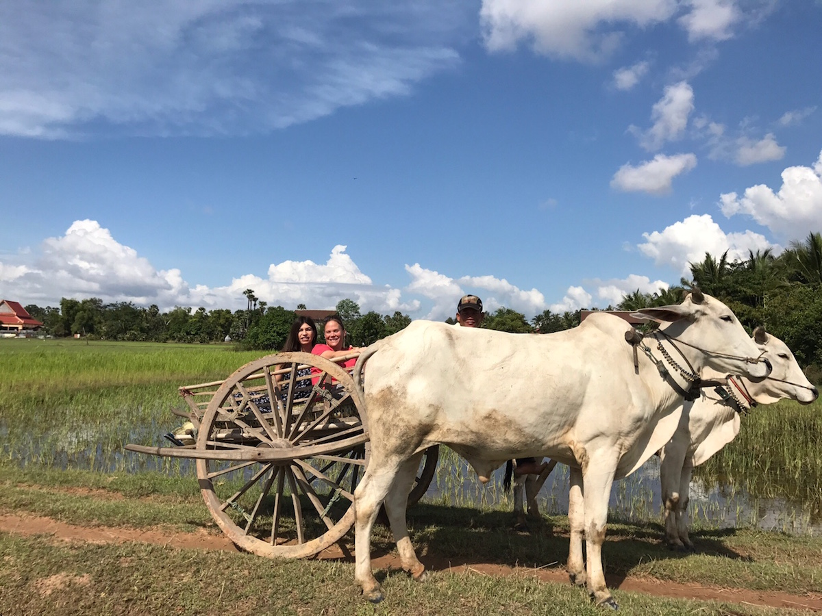 Dianna Upton - Jenny and Dianna on an oxcart in Cambodia