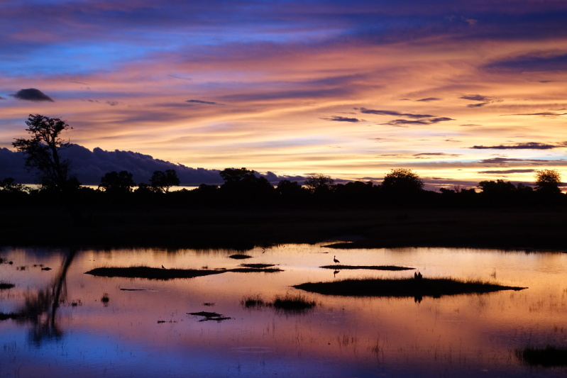 Kota Tabuchi - A Sunset in Botswana