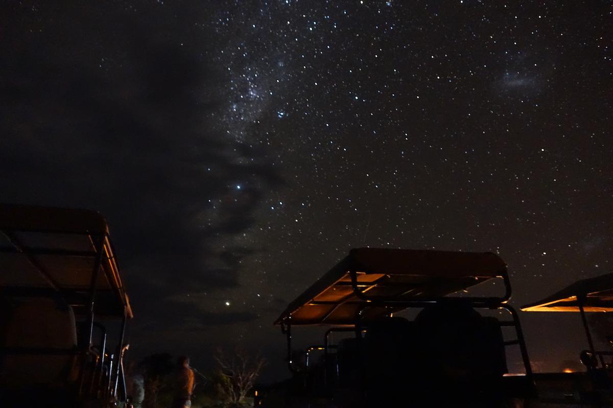 Rachel David - The Botswana night sky