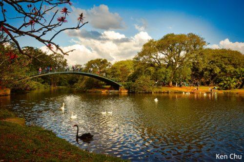 198-SPA_03_8397_P_Parque Ibirapuera