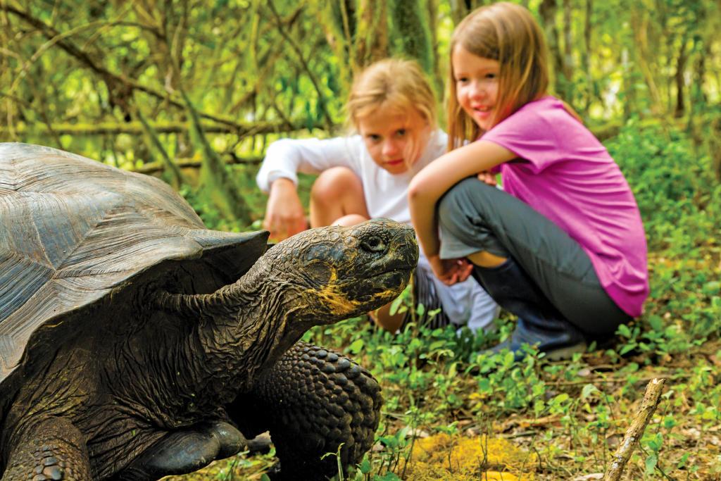 Kids with tortoise